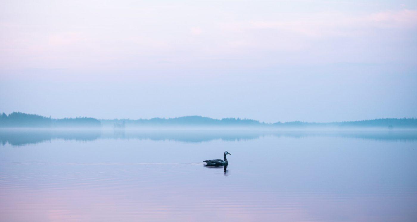 Mindfulness - Photo by Esther Wilhelmsson via Unsplash